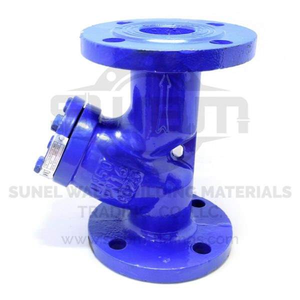 Y-Stainer Flanged